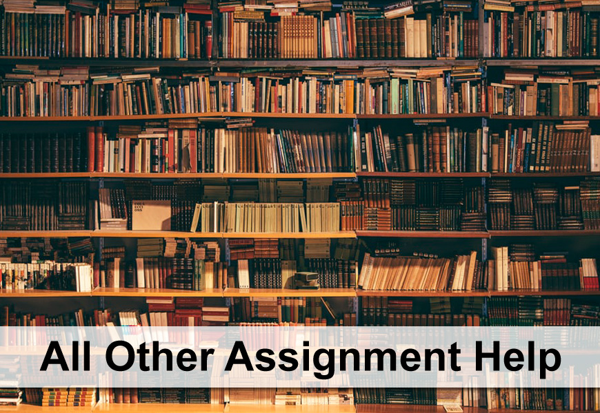 Other Assignment Help